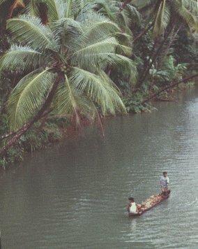 Sharavati river scene