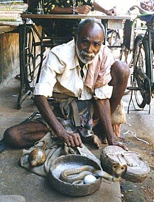 a snake charmer